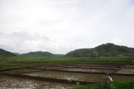 Eye in the sky: Space technology aiding Meghalaya to expand boro rice cultivation (Agricultural Feature)